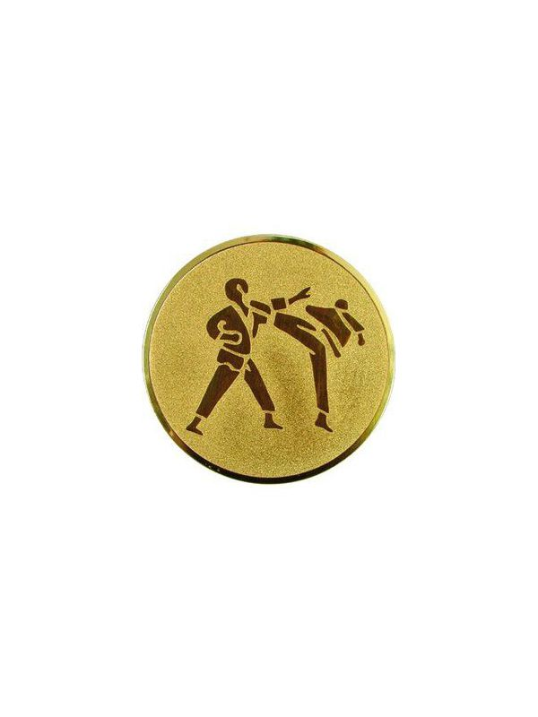 Emblém - karate /A60/