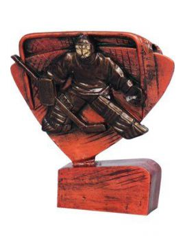 Trofej hokej