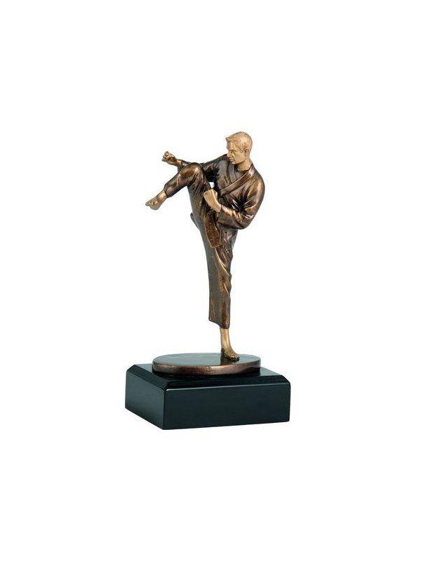 Trofej karate