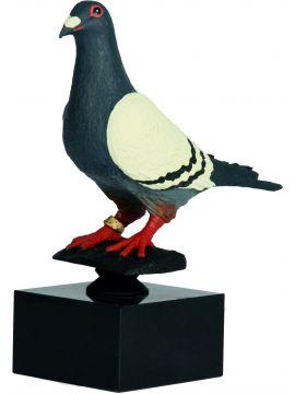 Trofej - holuby /RW577/