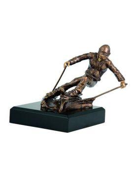 Trofej - lyžovanie /RFST2018/BR/