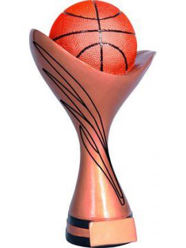 Trofej - basketbal /RFST2062/