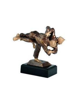 Trofej judo