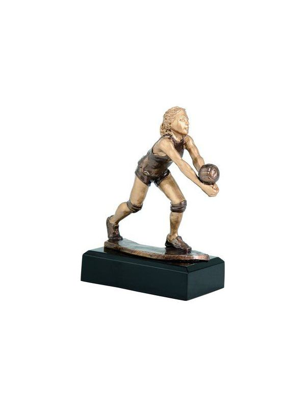 Trofej - volejbal /RFST2016/BR/